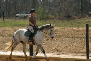 Brandy and Zoomer Riding
